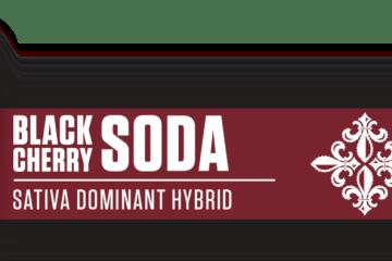 A Review of Royal Tree Gardens Black Cherry Soda Sugar Wax