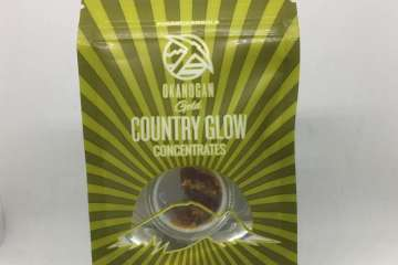 Tangie BHO - Okanogan Gold Cannabis Concentrate Review
