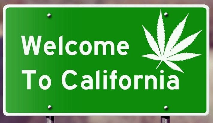 California Legalizes Cannabis: Here Are 5 Things You Should Know About Smoking Pot in CA