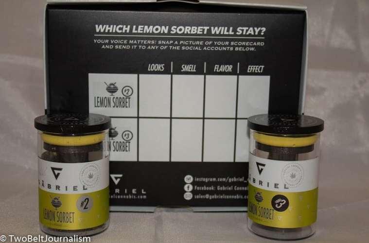 Will Lemon Sorbet #2 Win The Gabriel Cannabis Pheno Hunt?