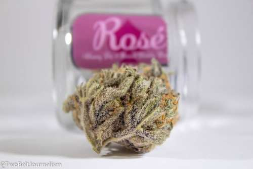 What Makes GLW's Rosé Cannabis Strain So Dank?