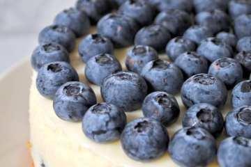 Blue Lime Pie 5 Concentrate Review (Prod. SkördMarijuana)