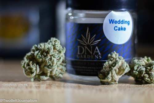 What Makes DNA Gardens Wedding Cake Strain So Dank?