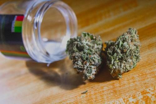 Tahiti Lime Strain Review (Prod. Kindness Cannabis)