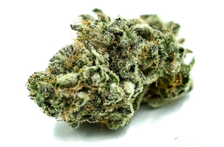 MedCare Farms Kush Is A Cannabis Strain California Can Trust (Official Review)