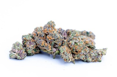 Cookies' Gary Payton Strain Pays Homage To The Legendary Seattle SuperSonic