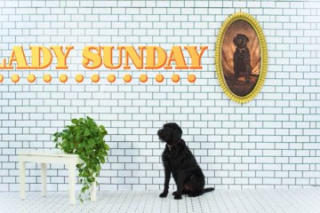 Sam Lachow Is Finally Back With 'Lady Sunday' Single and Visual Feat. Dave B