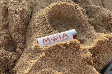 MOTA Is A Los Angeles Dispensary That Sells Clones And Pre-Veg Teens And Carries Their Own Expansive In-House Brand Of Cannabis Products