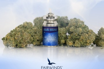 Strain-Specific Cannabis Inhalers Are Now 30% Off At All Evergreen Market Dispensaries Until The Beginning of August