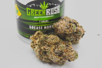 Best Strain Washington West Coast Weed Tour Review: Grease Monkey Ft. GreenRush in Washington State