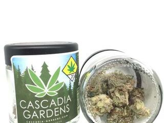 The Jack Strain Review Ft. Cascadia Gardens