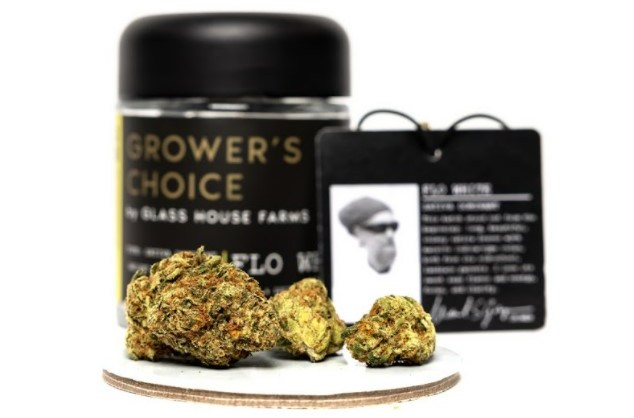 Flo White Strain Review Featuring The Grower's Choice Line From Glass House Farms In California