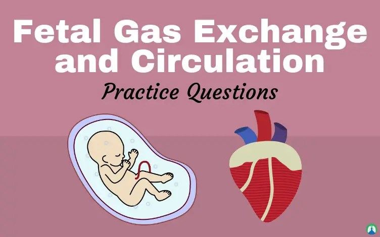Fetal Gas Exchange and Circulation (Practice Questions)