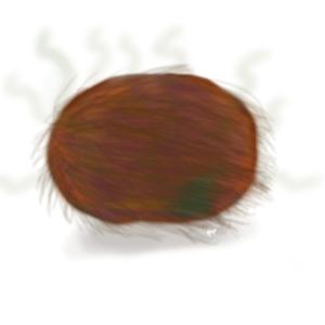 is it a hairy pumpkin, or a fuzzy pumpkin?