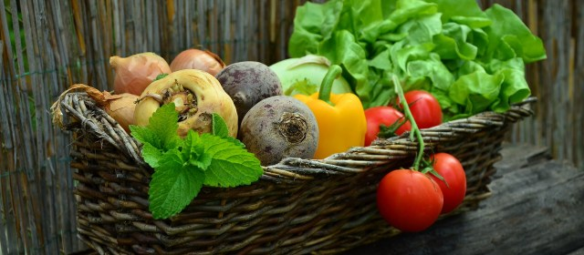 Specialty Food Association Trendspotter Panel Picks the Top 2019 Food Trends