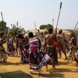 Ingoma dance by Ngoni