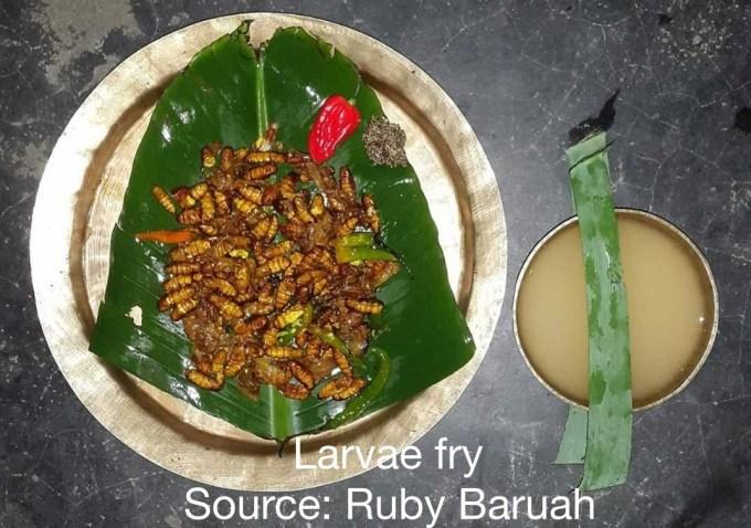 Larvae Fry