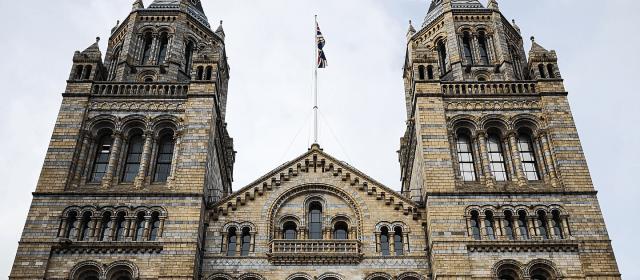 Bumpkin-South Kensington