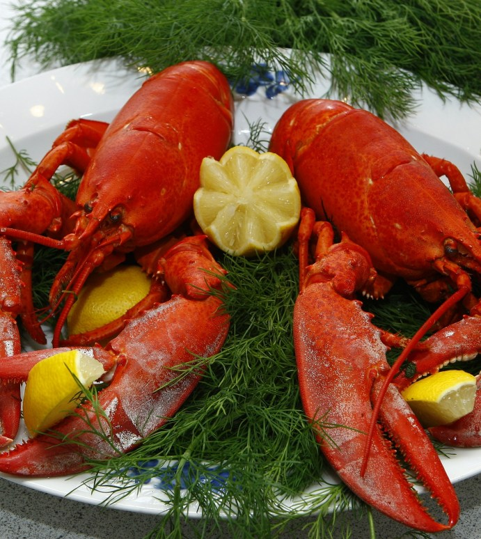 A Brief History of the Lobster…Should You Really Be Paying that Much?