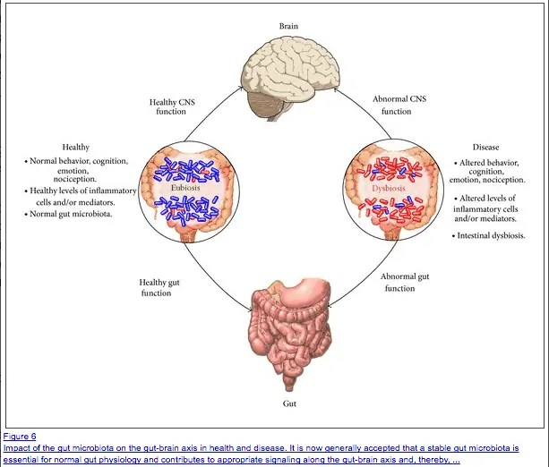 dysbiosis with a poor diet
