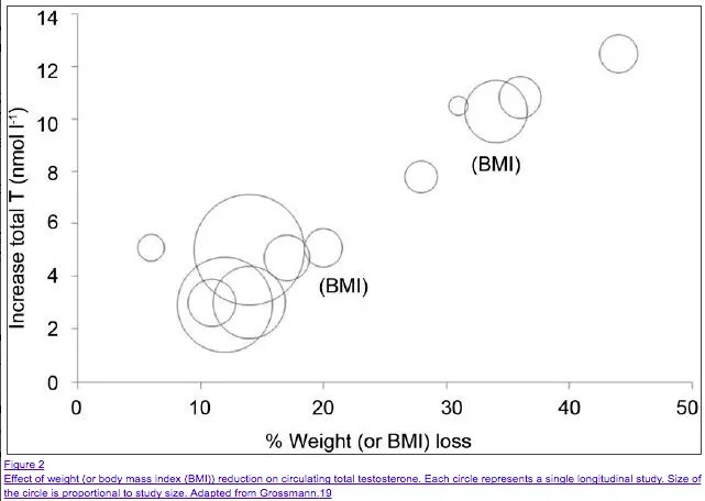 studies showing obesity compared to testosterone levels