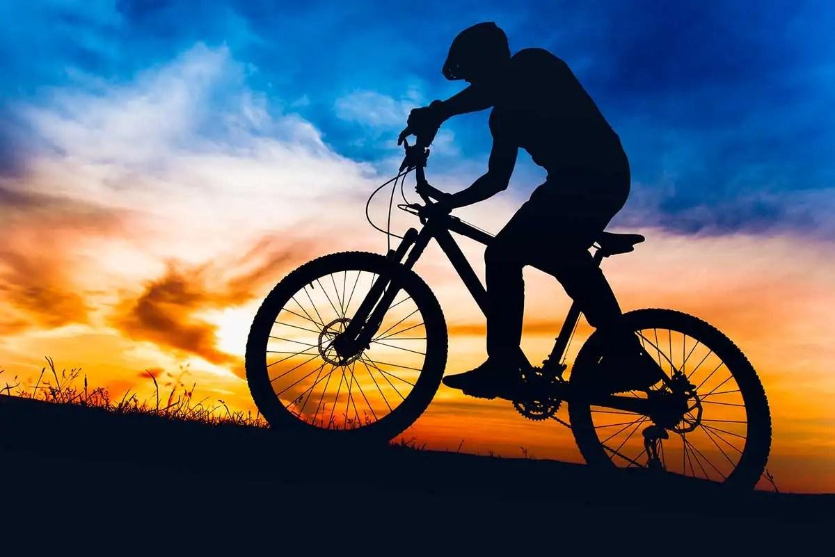 Ako si vybrať správny bicykel  c472c541adb