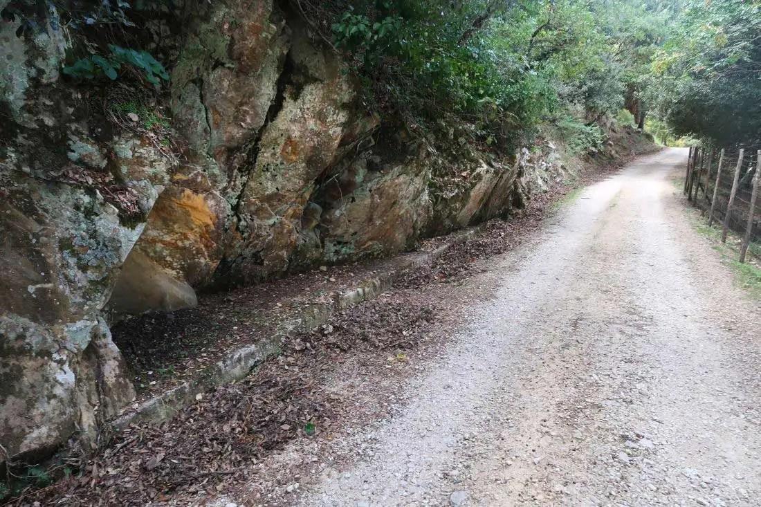 Ficuzza trail