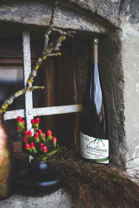 Vinohradnícky bežecký cross festival. Sviatok behu a vína vo Veľkom Krtíši.