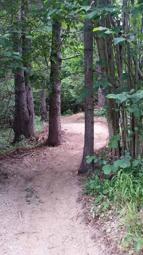 Sinlge trails Lechnica