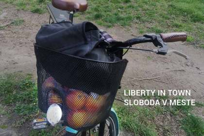 Liberty in Town