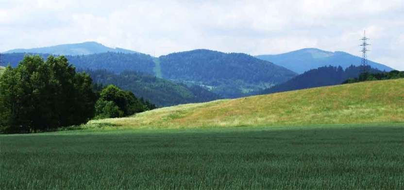 Javorinka, na Vertuľu, Levočské vrchy 1154 m.n.m.