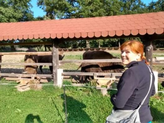 Roadtrip Slovakia: deň 5. Topoľčianky a Haluzická tiesňava