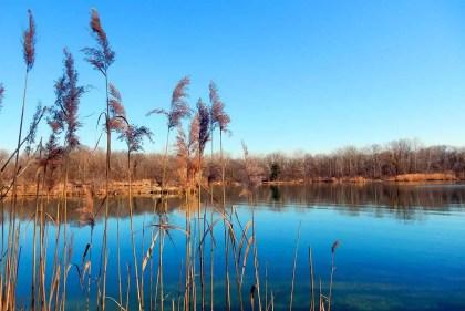 Rusovské jazero