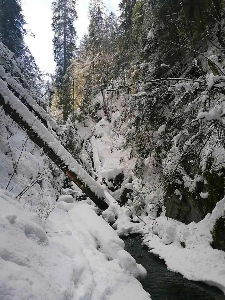 Veľký Sokol: Zimný prechod Slovenským rajom
