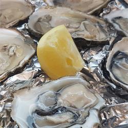 oesters zeevruchten wenduine