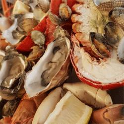 zeevruchten fruits de mer