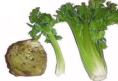 Mâncare de ciuperci cu ţelină