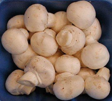 Ciuperci umplute cu amestec de branza de vaci