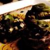 Ciuperci umplute cu măsline şi praz