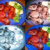 Reteta zilei: Pulpe de pui la tava cu garnitura de piure de cartofi