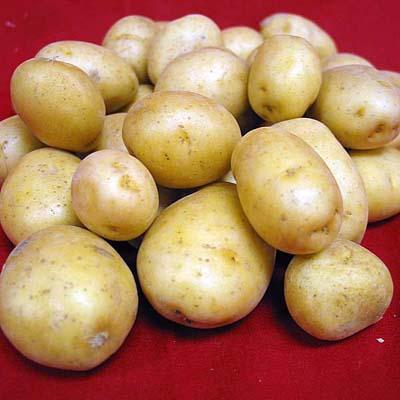 Supa de ţelina si cartofi
