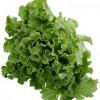 Ruladă de fasole cu salată