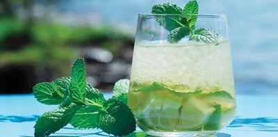 Cocktail cu lamaie verde, gin si menta
