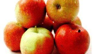 Ingrediente: # o ceaşcă de brânzică de vaci # o mână de fructe de pădure, un măr, stafide sau câteva căpşune 0 o linguriţă de miere 9 5 migdale măcinate Preparare: Amestecă toate ingredientele într-un bol şi consumă acest preparat cât este proaspăt.