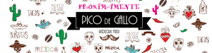 cropped-banner-pico-1 cropped-banner-pico-1.png