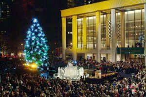 holiday-tree-20051