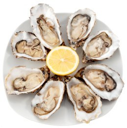 dam-online-style-020409oysters