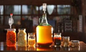 fermentation-1