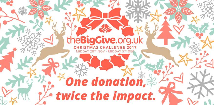 the 'BigGive' Christmas Challenge
