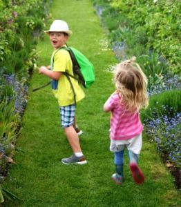 Bridewell Organic Gardens - Community afternoon 16th August 2018 @ Bridewell Organic Gardens   North Leigh   England   United Kingdom